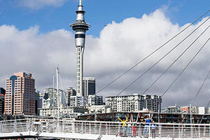 Auckland_gallery_111111